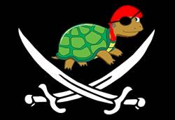 site build it pirates flag